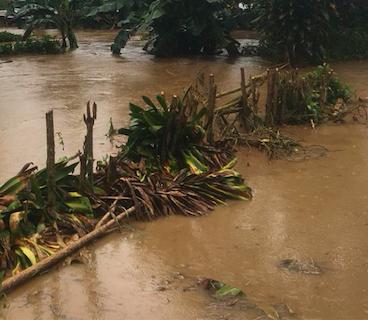 Donación de Alquiler de Equipos, ante el paso de la tormenta Nate en Costa Rica