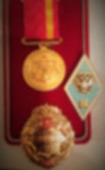 """медаль художнику от музея """"Мира"""""""