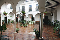 patiomuseo.png