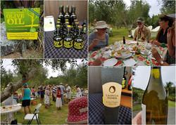 Taihoa Tides Olive Oil Grove
