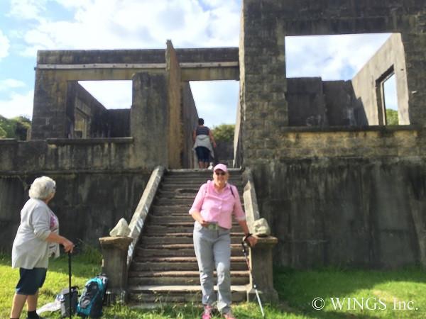 21 Mar 2019 - Matakohe Limestone Island