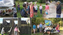 Matakohe Limestone Island Trip