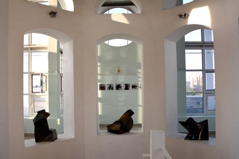Выставка Дарвиновский (1).JPG