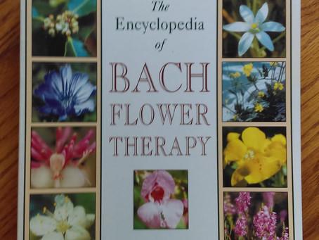 """""""Flower"""" Essences Support All Healing!"""