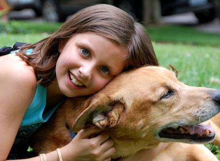 Kids & Dogs: NOT Okay?