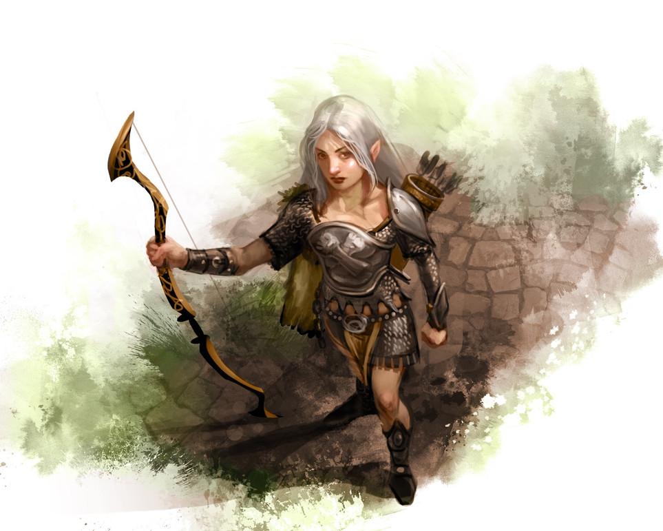 Half-Elf Bard