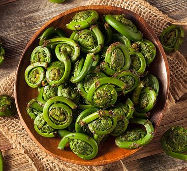 Raw Organic Green Fiddlehead Ferns Ready
