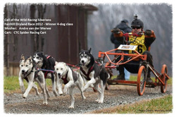 CTC Spider Racing Cart in action - 4-dog class winner 2012