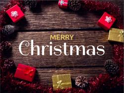 Christmas Posts