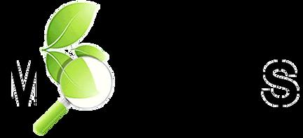Logo MOTTLES_transparent - v.png