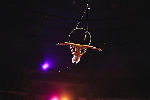 Cirque 8-10