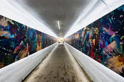 Coastal Anishinaabe Tunnel