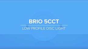 Brio Disc Light Promo
