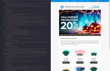 Custom Coded Responsive Email