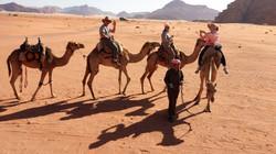 Jordan-camels