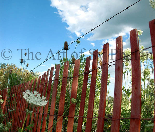 """""""Red Fence"""""""