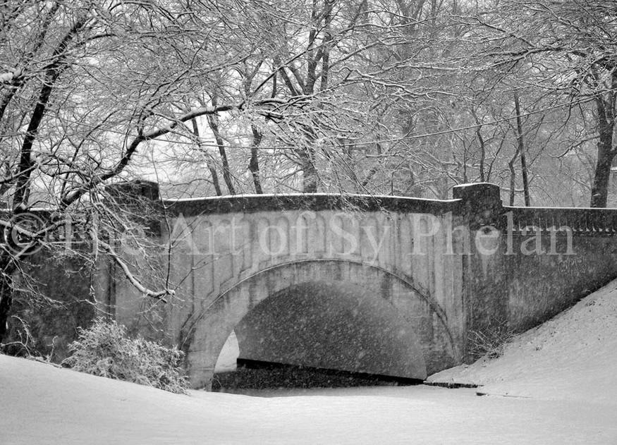 """""""Snow Bridge"""""""