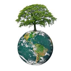 Green Earth Builders, LLC