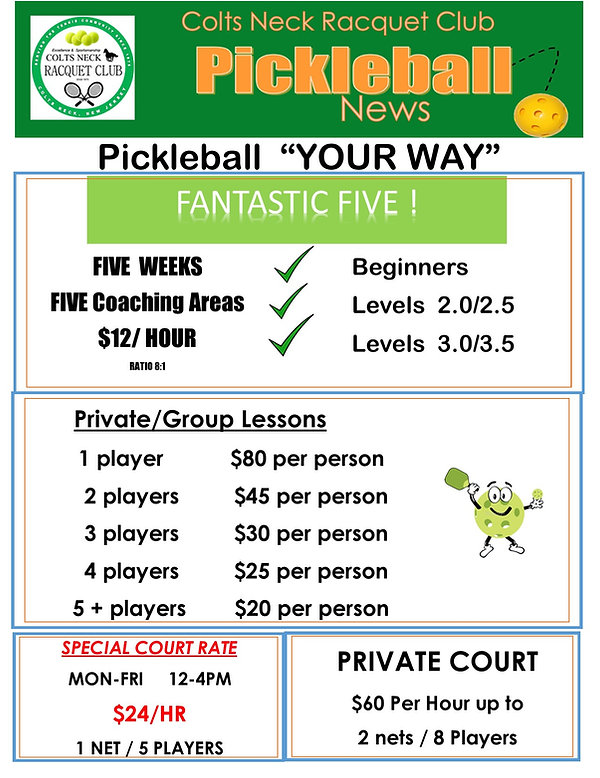 2021  Pickleball OVERVIEW FLYER for Less