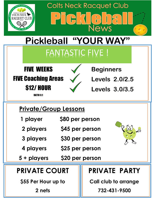 2020  Pickleball OVERVIEW FLYER for Less