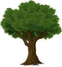 tree Small.png