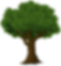 tree Big.png