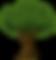 tree Big.png