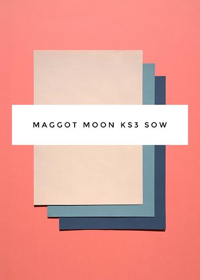 Maggot Moon Novel Scheme of Work