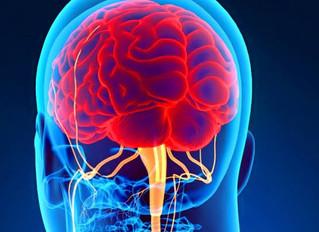 Mejora tu salud liberando las tensiones profundas del cuerpo