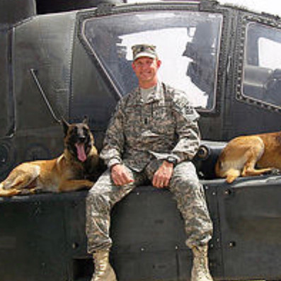 Dogs on apache helicopter James Hamm