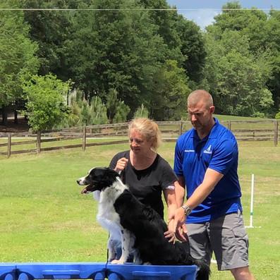 James Hamm Training dog owner