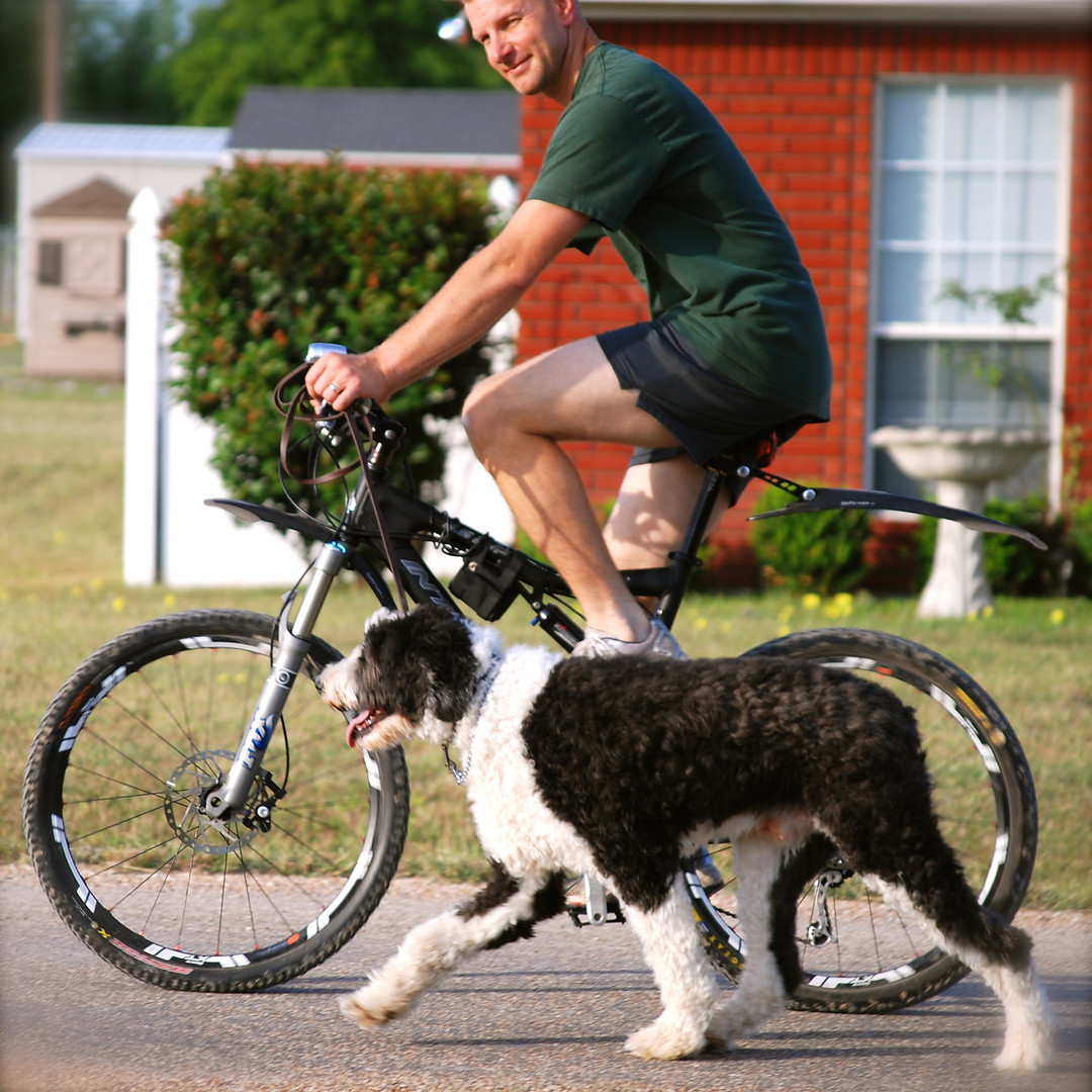 James Hamm cycling with dog