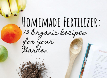 Homemade Fertilizer: 13 Organic Recipes for your Garden