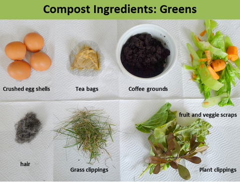 Food Cycler, compost greens, nitrogen, compost ingredients, compost materials
