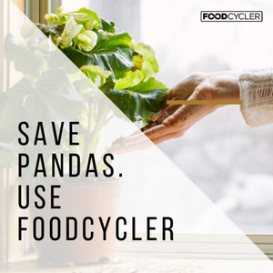 Food Cycler, reusing leftovers, food recycling, food waste management, zero waste, recipes for reducing food waste