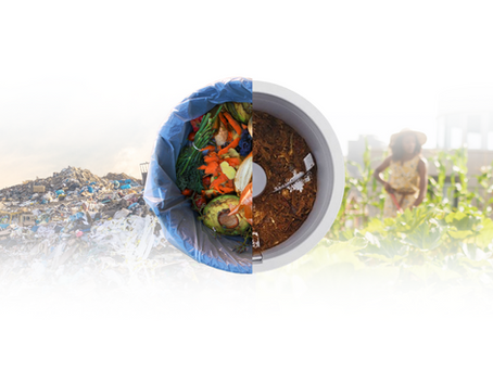 Eco-Living: How Processing Your Food Waste at Home Could Save the Planet