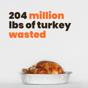 204 million lbs of turkey wasted