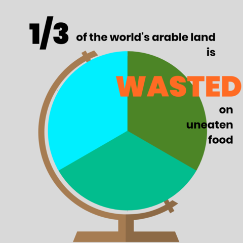 Burgerlary: An Overview of the Global Food Waste Epidemic