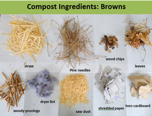 Food Cycler, compost ingredients, what to add to compost, compost browns, compost carbon, carbon ingredients, easy compost