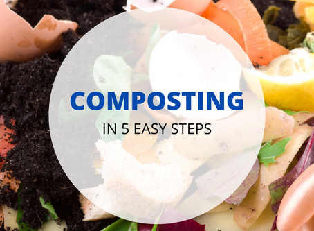 Let's Compost TODAY: 5 Easy Steps for Going Green In 2020