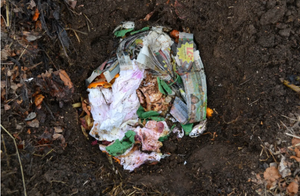 apartment composting methods, zero waste, food recycling, food waste management, gardening, Bokashi