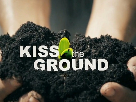 Smoochin' Soil: 11 Things We Learned from Kiss the Ground