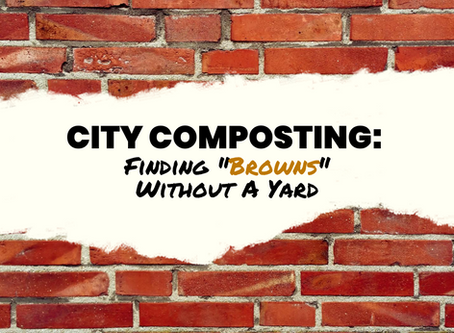 """City Composting: Finding """"Browns"""" Without A Yard"""