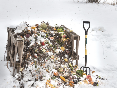Winter Composting - Does It Work & How Do I Do It?