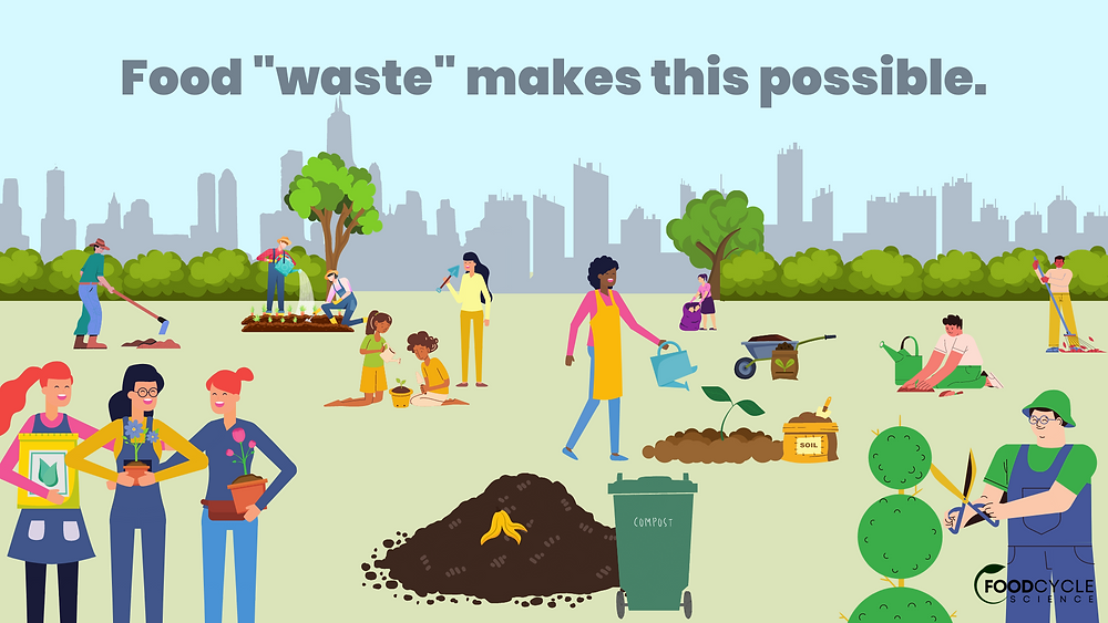 Healthy community gardens are just one of the benefits of composting food waste!