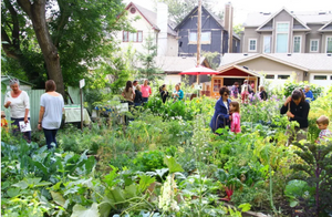 apartment composting methods, zero waste, food recycling, food waste management, gardening, community composting