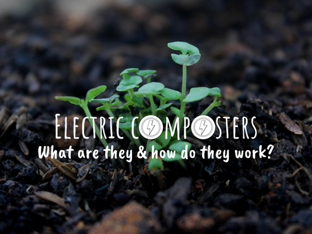 Electric Composters: What Are They and How Do They Work?
