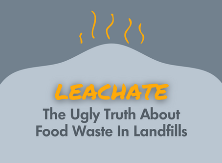 Leachate: The Ugly Truth About Food Waste In Landfills