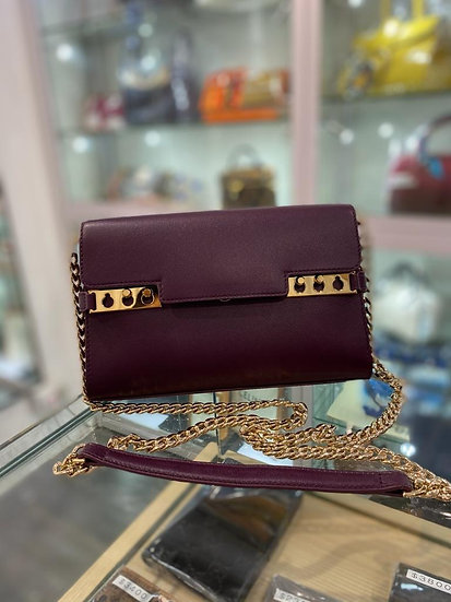 Delavxu wallet on chain 紫色