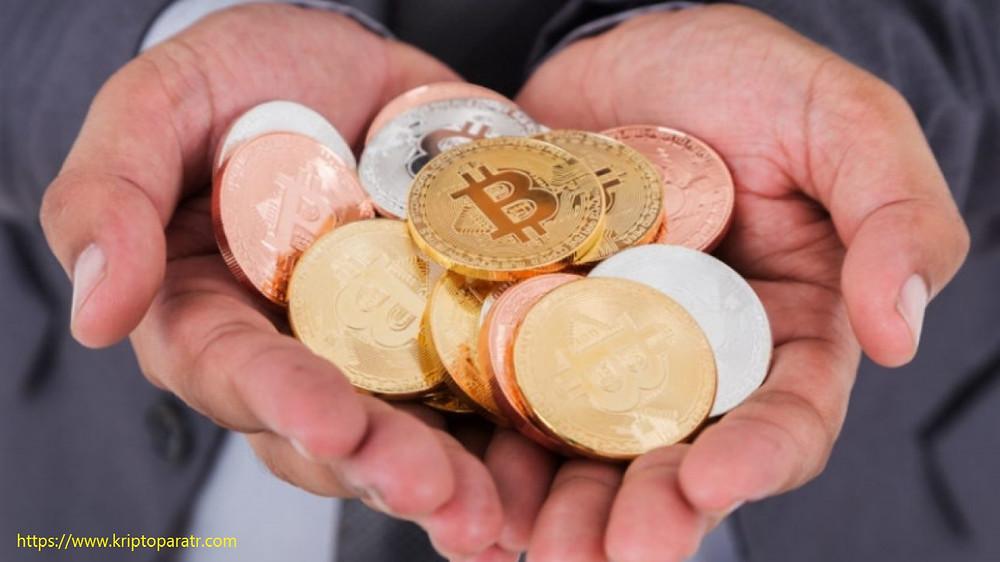 Riksbank yöneticisi Bitcoin'in düzensiz kalmayacağını söyledi
